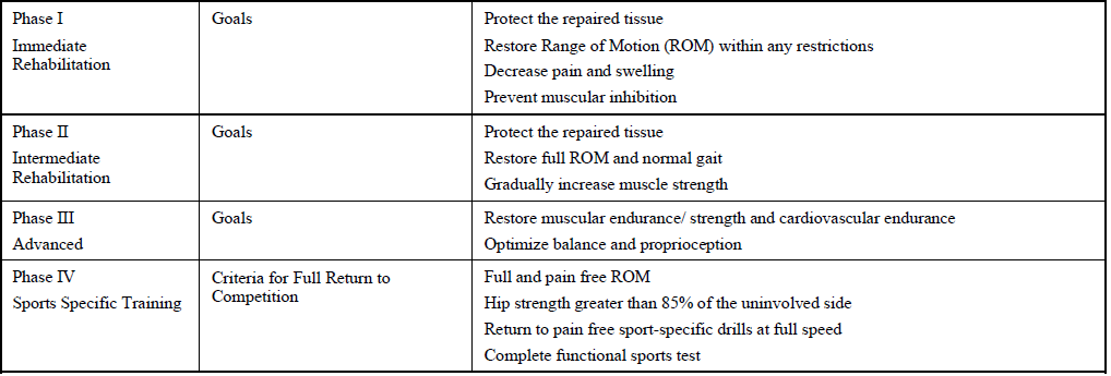 Physical Therapy Management of Hip Labral Tears - Morphopedics